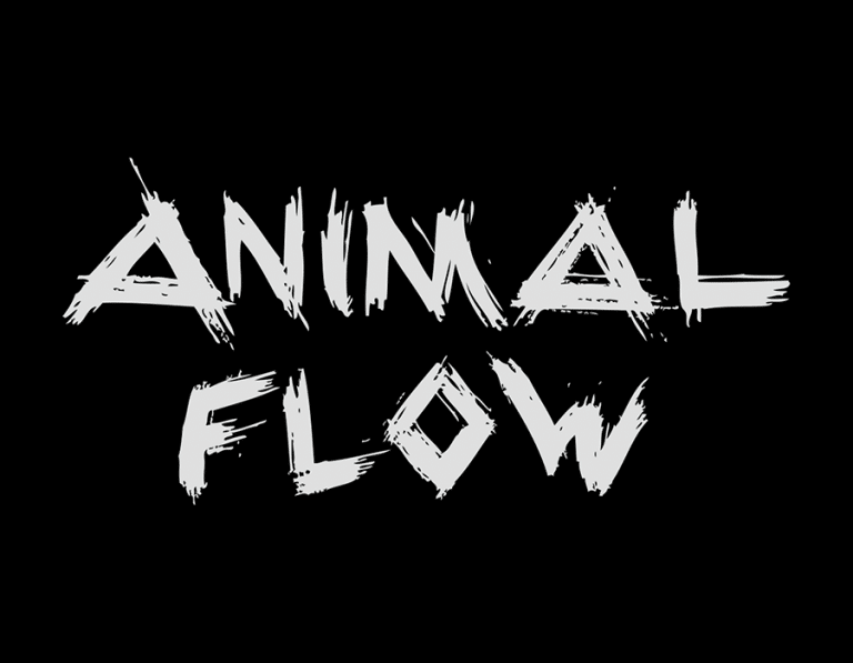 The Brick brings Animal Flow to Antwerp